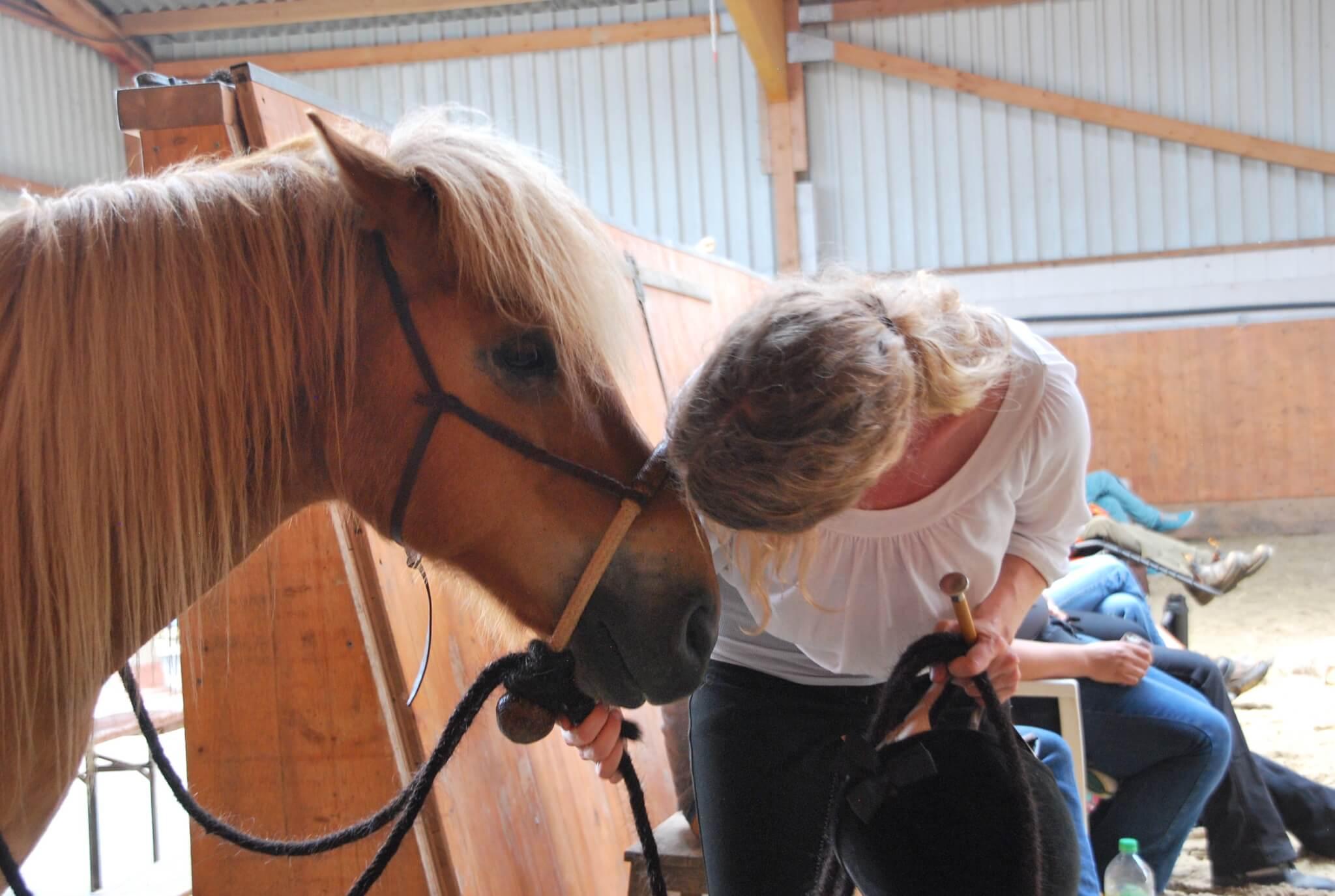 Amanda Barton Horsemanship-Kurs – vielleicht der schönste G20-Gegenpol