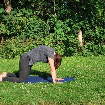 Wie du dich mit Yoga insgesamt zu einem besseren Reiter machst