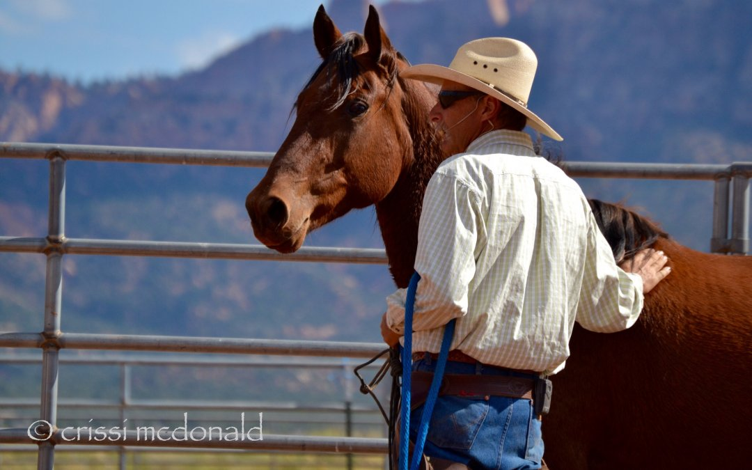 """""""We have to learn to understand our horses."""" – Interview with Mark Rashid"""