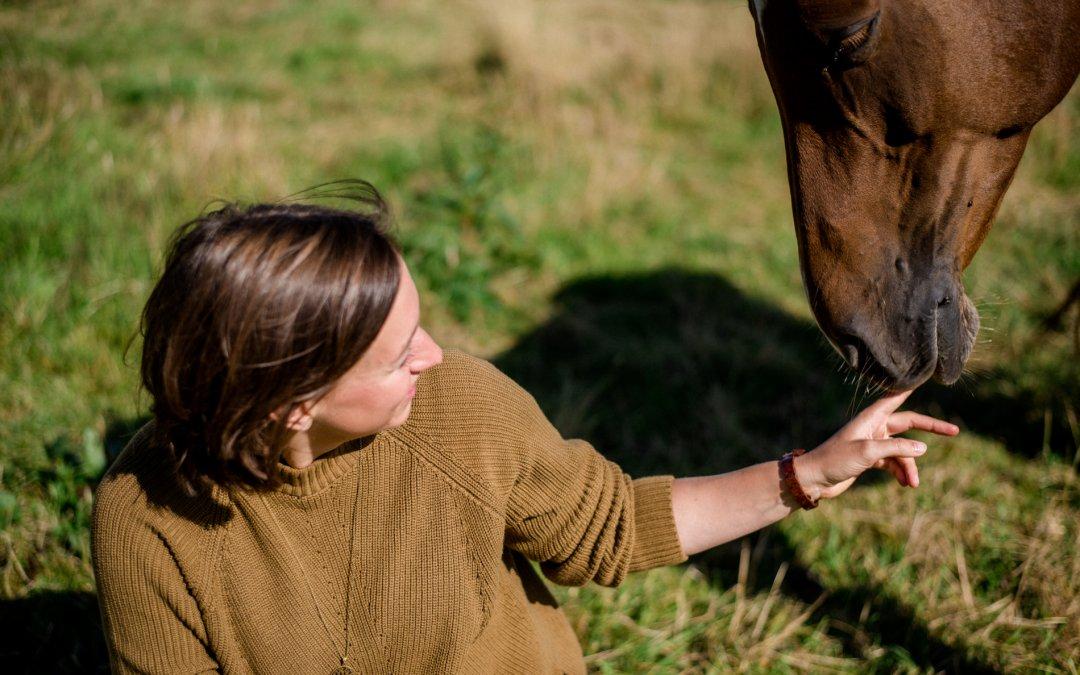 Diese drei Dinge stehen der Harmonie zwischen Mensch und Pferd im Weg
