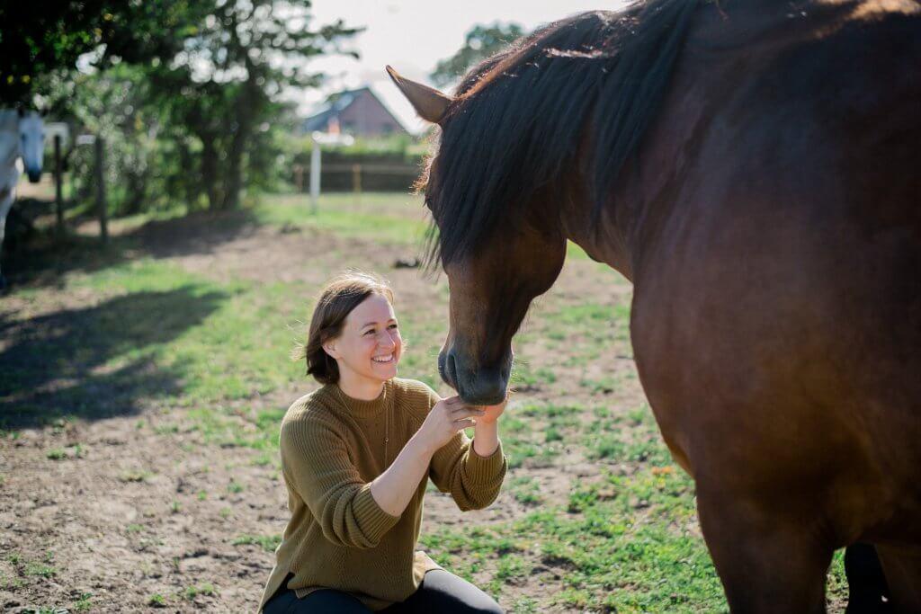 Wo beginnt die Freundschaft mit Pferden?