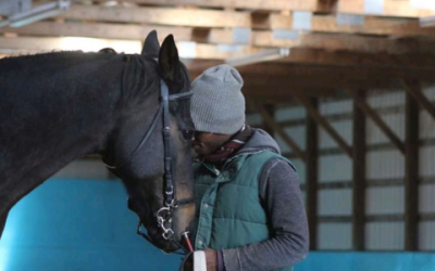 Horses teach me how to see – Interview with Nahshon Cook