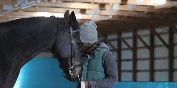 Pferde lehren mich, wie man sieht – Interview mit Nahshon Cook